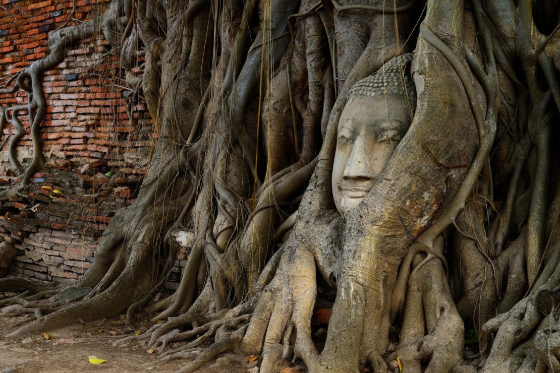 Wat Mahathat, Ayutthaya, Tailandia