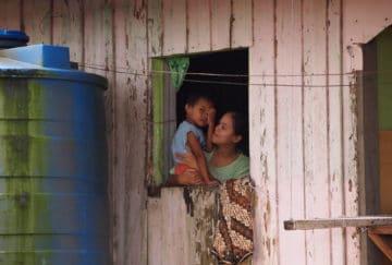 Viaje a Borneo. A medida Nomads. Borneo vida salvaje