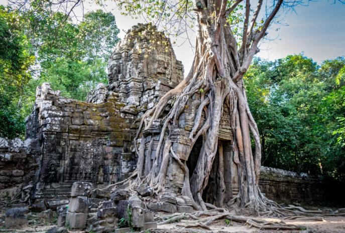 viaje a camboya en grupo